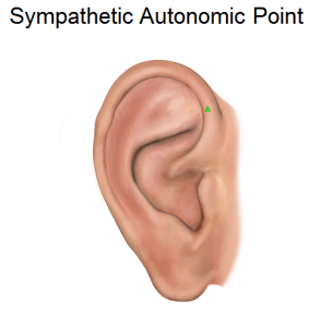 Sympathetic-Autonomic-Point